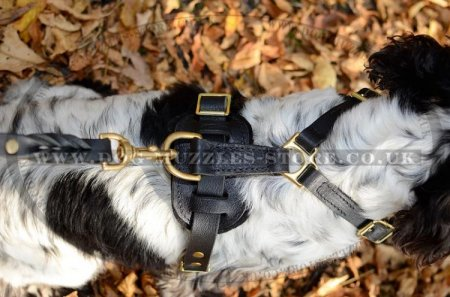 Super Comfy Y-Shaped Dog Chest Harness for Spaniel