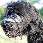 Dog Muzzle with Rubberized Wire Basket for Any Weather