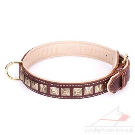 "Alluring Brown Leather Dog Collar ""Pyramid"" With Adornment"