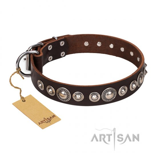 Great Brown Dog Collar with Studs FDT Artisan 'Step and Sparkle'