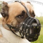 Alabai Muzzle for Big Dog, Soft and Strong Leather Basket