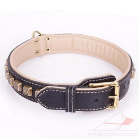 Extra Durable Black Leather Brass Dog Collars Studded With Cubes