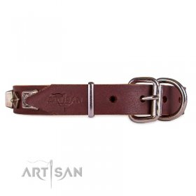 Best Brown Thick Studded Dog Collar FDT Artisan For Active Walk