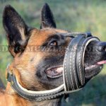 Soft Dog Muzzle for Shepherd | Belgian Malinois Muzzle Daily