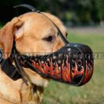 "Designer Dog Muzzle for K9 Dogs Work with ""Flame"" Painting"