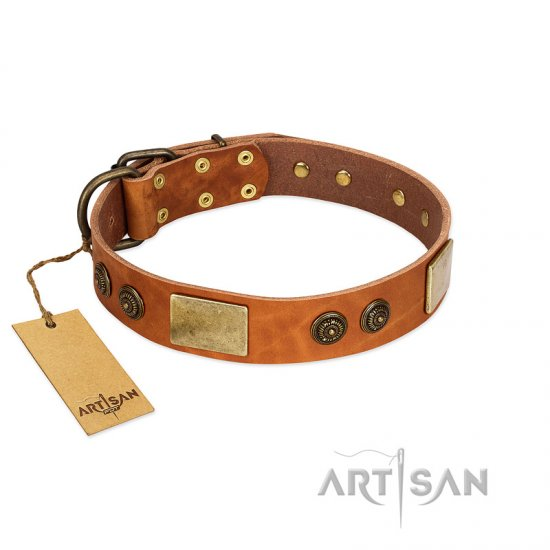 Tan Leather Dog Collar With Plates And Medallions