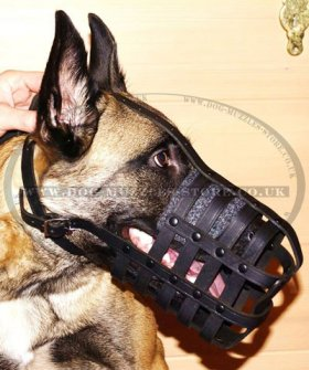 Buy Now Leather Dog Muzzle UK Bestseller