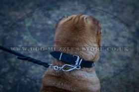 """Tetrahedron"" Best Dog Collar For Shar Pei UK 1"" (2.5 cm)"