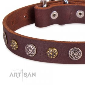 Adorned Brown Leather Dog Collar For Dogs 1 In Width