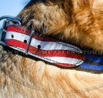 Hand-Painted Dog Collar US Straps and Stars