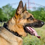 Nylon Collars for German Shepherds, with Glossy Pyramids