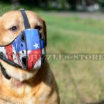 "Labrador Dog Muzzle of Special Construction ""American Style"""