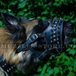 Soft Padded Dog Muzzle Loop with Spikes for Tervuren
