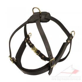 Spaniel Dog Body Harness with Chest Strap Real Leather Padded