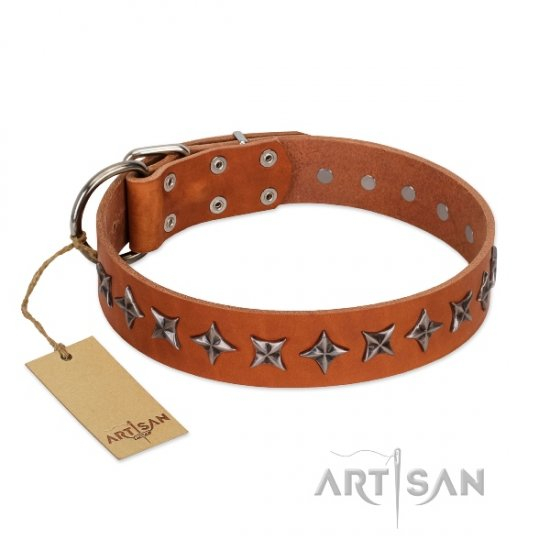 Easy Adjustable Leather Dog Collar with Stars FDT Artisan