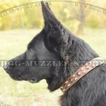 Nice Studded Design of German Shepherd Collar UK Bestseller!