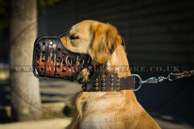 Leather Golden Retriever Muzzle with Handmade Painting