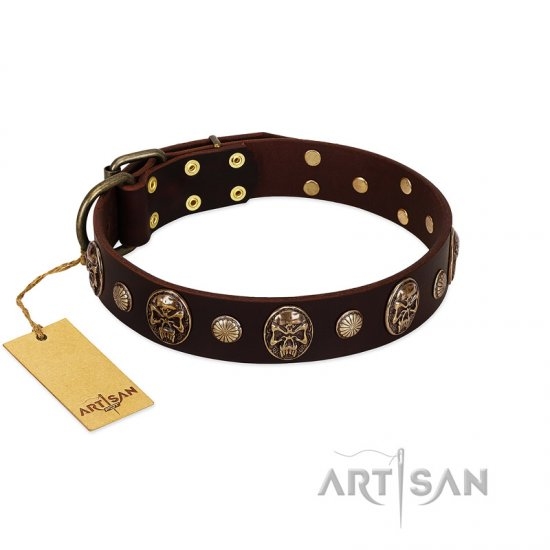 Brown Dog Collar FDT Artisan