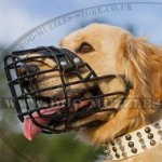 Rubber-Coated Wire Basket Dog Muzzle Size for Golden Retriever