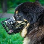 Rubberized Wire Dog Muzzle for Mastiff and Other Big Dogs