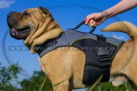 Dog Harness Rain Jacket For Shar Pei | Dog Vest Harness Jacket