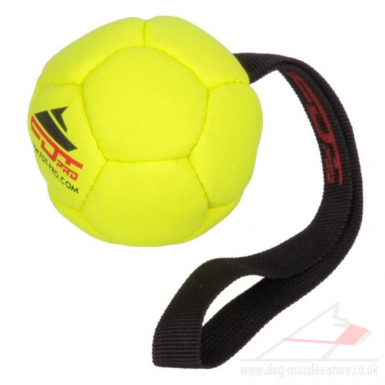 Dog Ball Toy With Handle