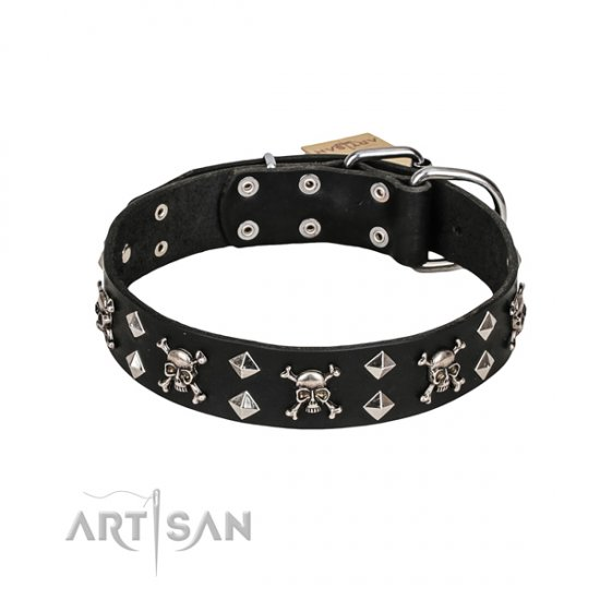 Leather Dog Collar FDT Artisan with Studs, Bones and Skulls