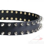 Spiked Leather Dog Collar Luxury Style