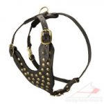 Studded Dog Harnesses for Sale | Luxury Dog Harness UK