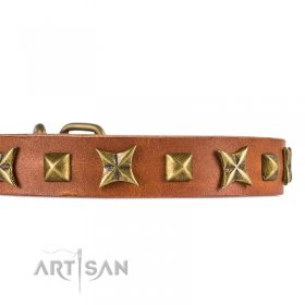 Designer Light Tan Leather Dog Collar With Studs FDT Artisan