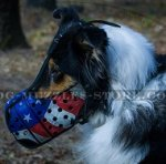 Handmade Painted Collie Dog Muzzle for Active Dogs Training