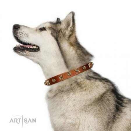 Functional Tan Leather Studded Dog Collar FDT Artisan