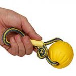 Interactive Dog Toys: Foam Rubber Dog Ball with Rope 3 in