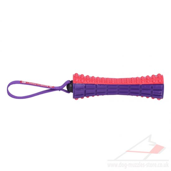Dog Toy for Big Dogs UK