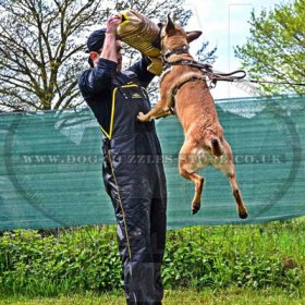 The Best Dog Bite Sleeve for Sale UK for IGP Dog Training