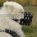 Soft Dog Muzzle for Samoyed Dog Breed, Nappa Padded