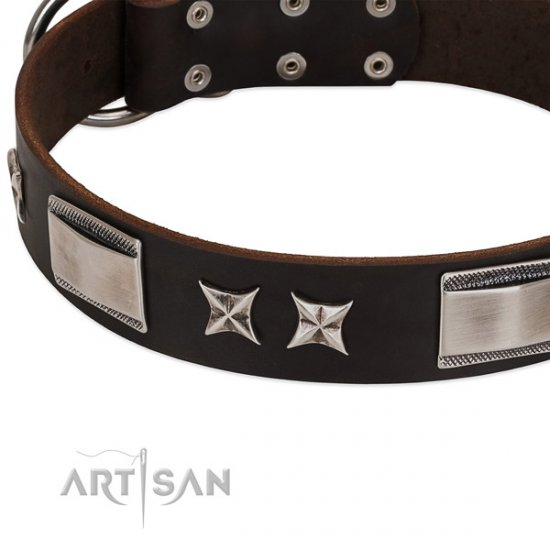 Embellished Chocolate Brown Dog Collar by FDT ARtisan