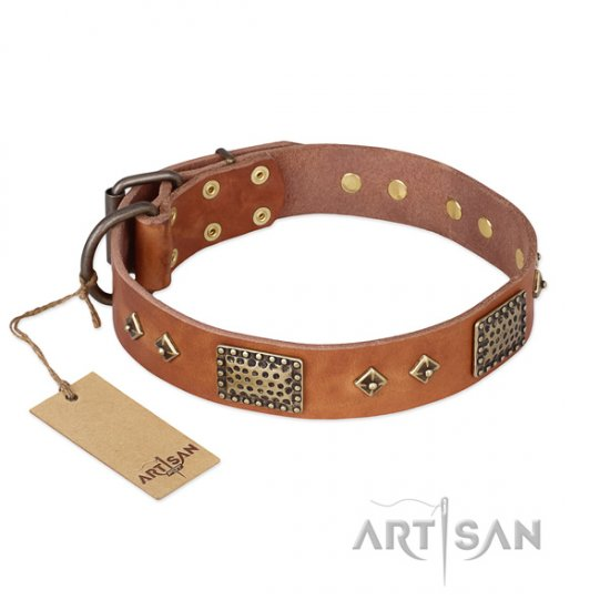Fantastic Leather Dog Collar FDT Artisan 'Catchy Look'