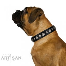 Luxury Black Leather Dog Collar with Studs FDT Artisan