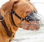 Dog Muzzle for Dogue De Bordeaux | Dogue De Bordeaux Muzzles UK