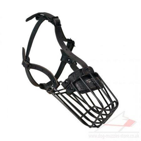 Boxer Basket Muzzle for Dogs in 30 Sizes for Individual Comfort