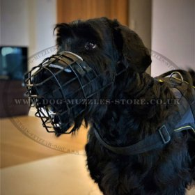 Safe Coated Wire Basket Dog Muzzle for Giant Schnauzer