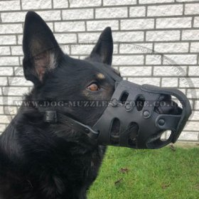 Muzzles for Dogs with Long Snout, Reliable and Soft Leather