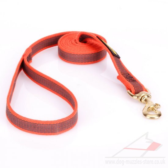 Pink Nylon Dog Lead UK