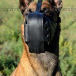 Agitation Dog Muzzle UK | Belgian Malinois Muzzle K9