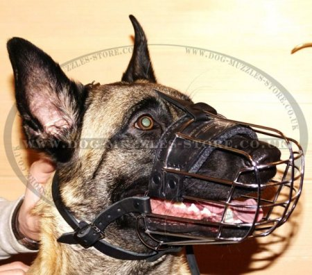 Best Basket Muzzles for Dogs UK for All Breeds Individual Shape
