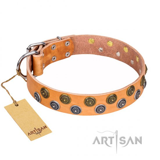 Great Tan Leather Dog Collar 'Precious Sparkle' FDT Artisan