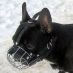 Basket French Bulldog Muzzle UK from the Producer