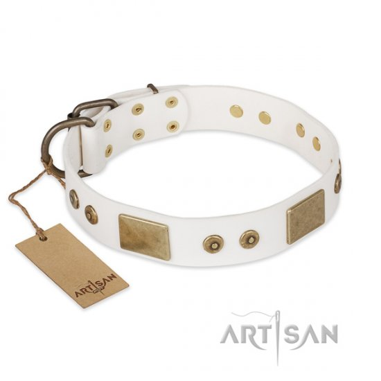 New Leather Dog Collar FDT Artisan 'Unforgettable Impress'