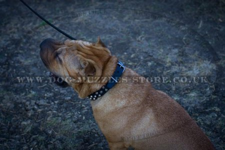 """Fancy Studs"" Black Leather Dog Collar For Shar Pei"